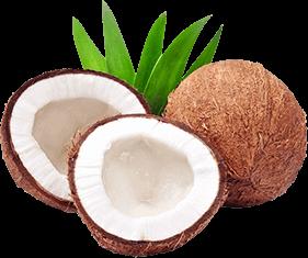coconut-image
